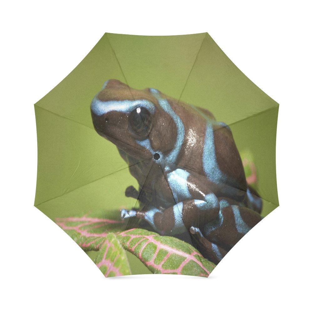 カスタムPoison Frogコンパクト旅行防風防雨折りたたみ式傘 B075X4JGGY
