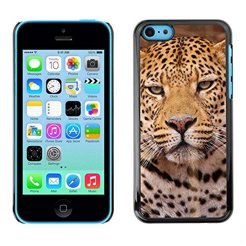 Premio Sottile Slim Cassa Custodia Case Cover Shell // V00002172 Léopard // Apple iPhone 5C