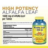 Nature's Life® Alfalfa Leaf Tablets 1000mg