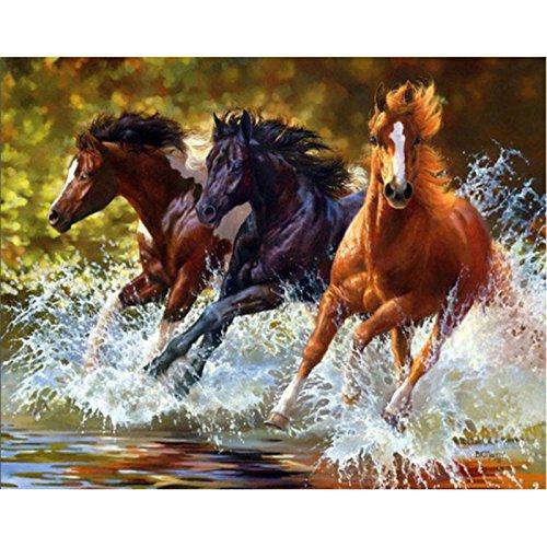 5D Pintura por Diamantes (5619) caballo
