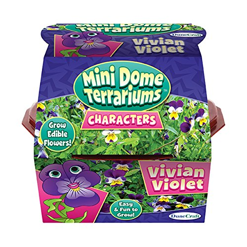 Dunecraft Vivian Terrariums, Violet