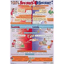 How Much or How Many? Grammar and Usage Poster (TEFL / ELT / ESL / ESOL) by Cathy Suzuki (1998-10-01)