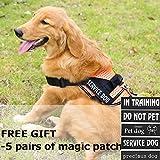 PATPET Dog Harness-Reflective and Breathable-No Pull Adjustable Pet Vest Harness for Medium/Large Dogs,Soft Mesh,Easy Walk(S-Orange)