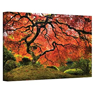 Art Walls Japanese Tree Gallery Wrapped Canvas by John Black, 30 by 48-Inch