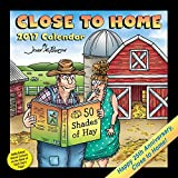 """Funny Comic Strips Close to Home 2017 Day-to-Day Desk Calendar, 5.4"""" x 5.5"""""""