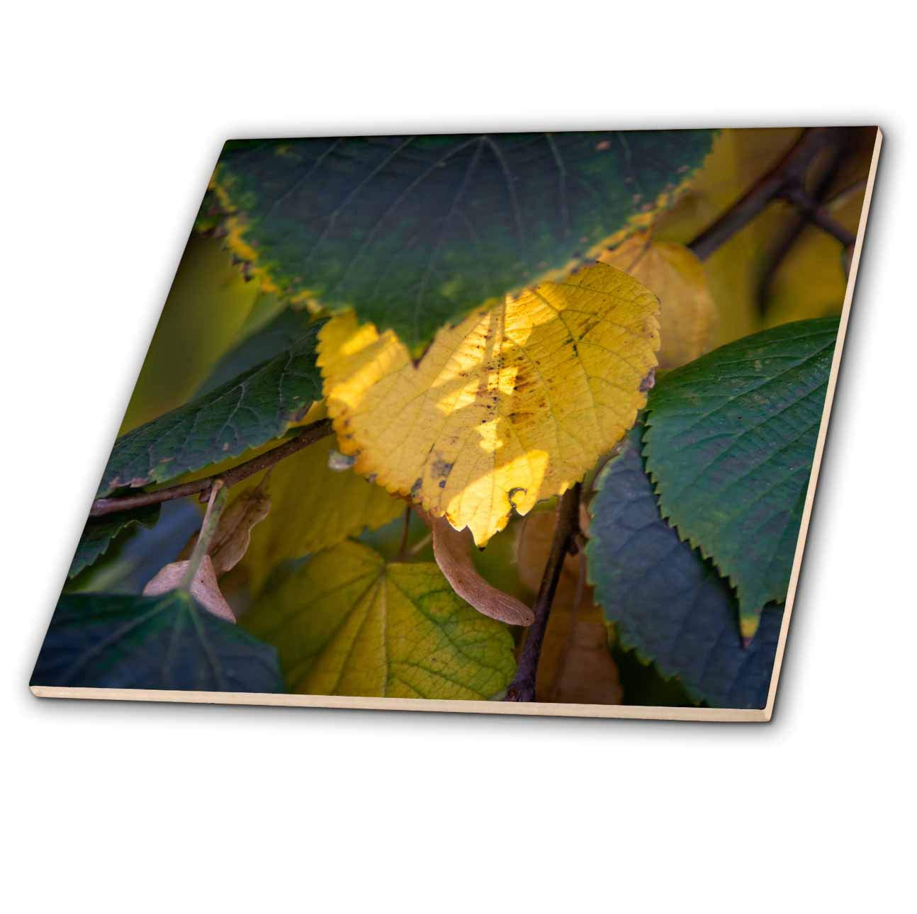 AUTUMN LEAVES CUSHION COVER IN SULPHER YELLOW /& GREY 17 INCH