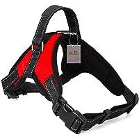 Atomzone Arnés para Perro ergonómico con Correa Ajustable - Máxima protección y Comodidad para tu Mascota en Todo…