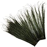 ZUCKER Peacock Flue (Herl) Natural Feathers - 14 -16'' - Natural