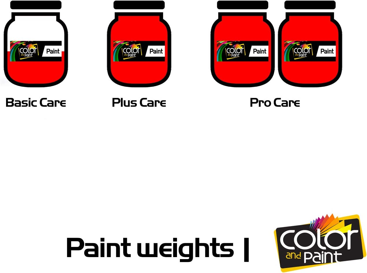 P12 Color and Paint Touch UP Paint System for Paint Chips and Scratches//PRO Care DODGE RAM for//Bright RED