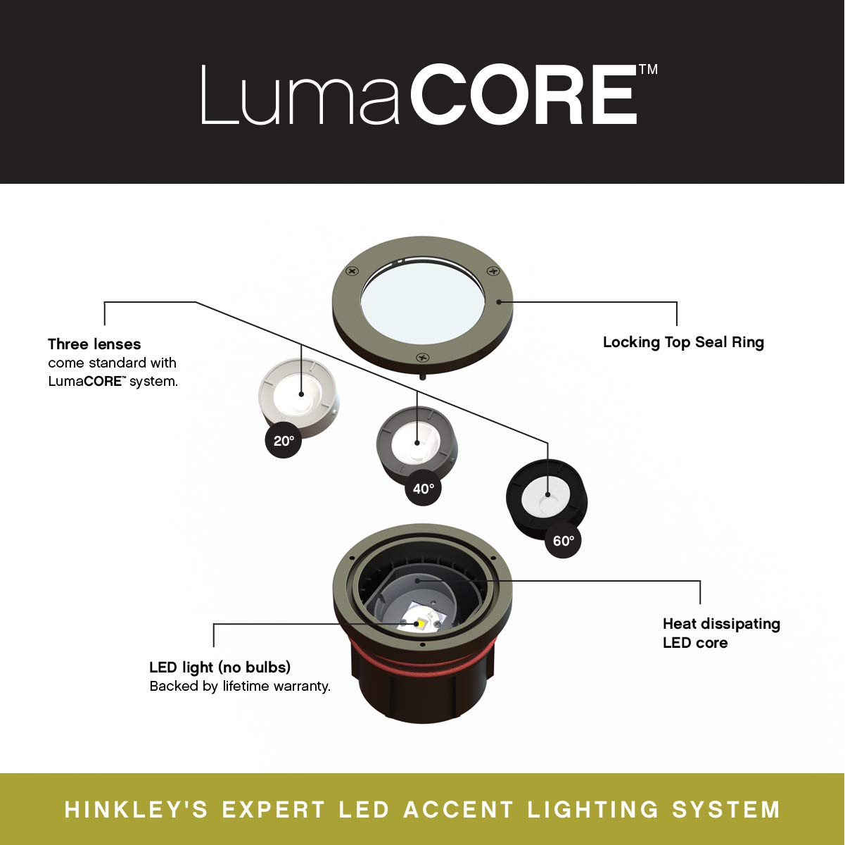 Hinkley Landscape Lighting Grill Top LED Well Light – Highlights Important Landscape Features and Surfaces and Increases Home Security, Bronze Finish, 75W Equivalent 12W LED Light, 15705BZ-12W27K by Hinkley (Image #2)