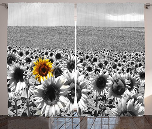 Ambesonne Modern Decor Curtains, Sunflower Field Black and White with a Single Yellow Flower Spring Landscape Image, Living Room Bedroom Window Drapes 2 Panel Set, 108W X 63L Inches, Grey