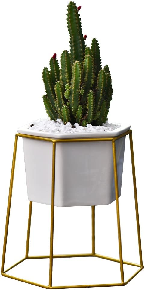 Flower Pots Indoor,Yousun 6.69 inch Modern Design White Ceramic Succulent Planter Pot with Metal Stand for Succulent Plants Mini Cactus Air Plant White-Gold