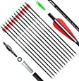 ANTSIR 30 Inch Carbon Arrows Practice Targeting Arrows with Removable Tips for Compound and Recurve Bow(Pack of 12)
