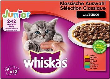Whiskas Katzenfutter Nassfutter Junior 1 Katzchen Kitten