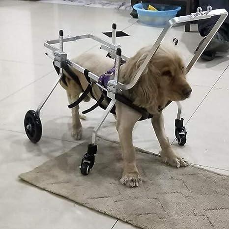 Dog wheelchair Best Friend — Silla de ruedas para perros Carrito de acero inoxidable de 4