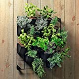 Vertical Wall Garden Planter Kit with 12 Pots - Metal Frame Size 22'' W by 26'' H - Pot Size 6'' W x 8'' H - Durable for Indoor or Outdoor Gardening