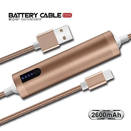 Amazon.com: USB C Cargador de emergencia batería externa ...