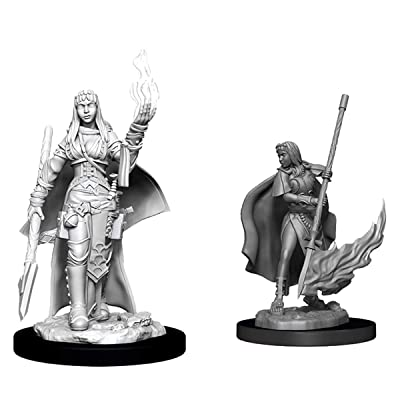 WizKids Pathfinder Deep Cuts Unpainted Miniatures: Female Human Oracle (Magic User): Toys & Games