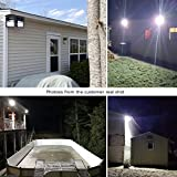 LEPOWER New Craft LED Flood Lights, Super Bright