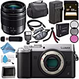 Panasonic Lumix DMC-GX8 (DMC-GX8SBODY) Mirrorless Micro Four Thirds Digital Camera (Silver) + Panasonic Lumix G Vario H-FS12060 12-60mm f/3.5-5.6 ASPH. POWER O.I.S. Lens + DMW-BLC12 Battery