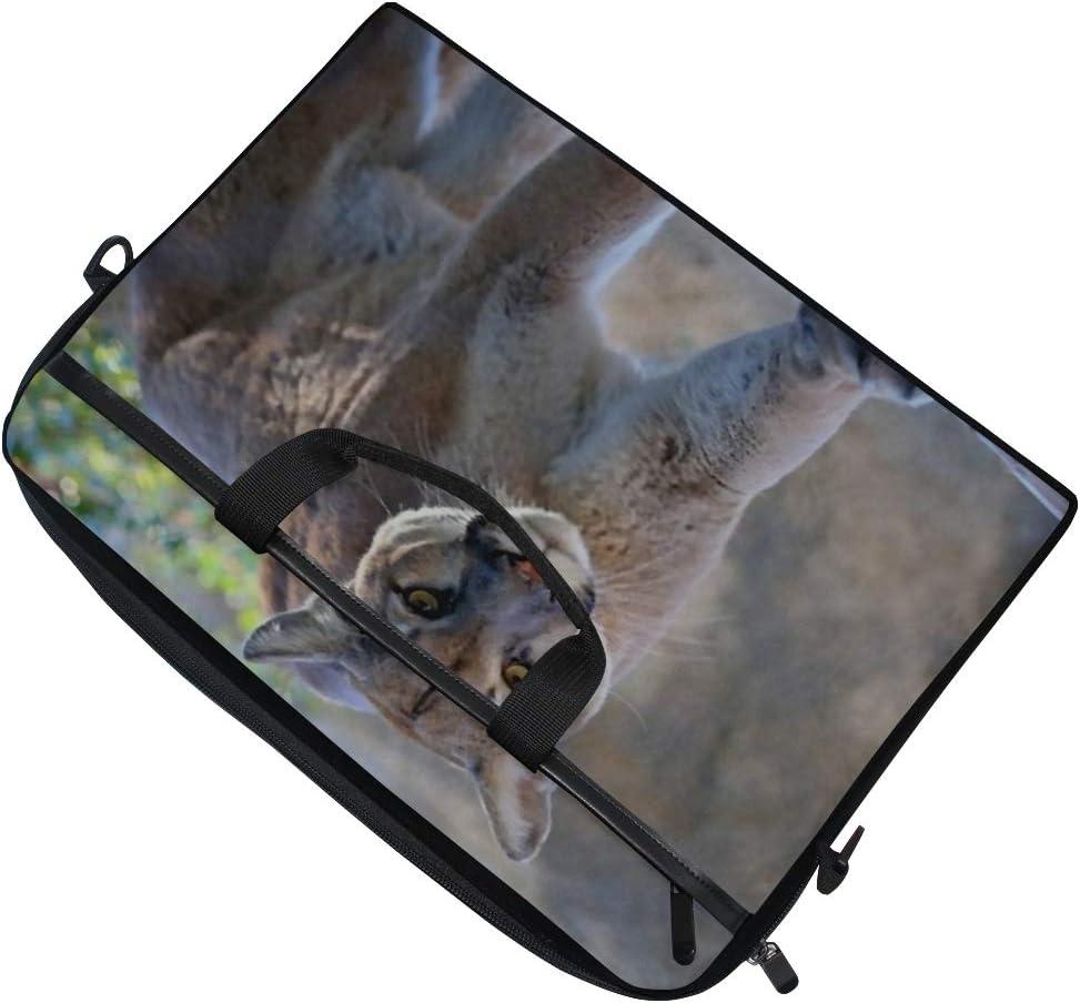 Laptop Bag Mountain Lion Close 15-15.4 Inch Laptop Case Briefcase Messenger Shoulder Bag for Men Women College Students Business People Office Wo