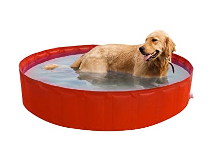 Vasca Da Bagno Per Cani Prezzi : New plast my dog pool piscina per cani arancione cm