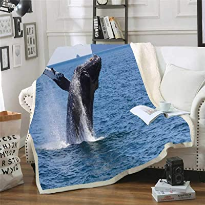 Musesh Winter Warm Blankets 60X80 Inch Humpback Whale National Park Kenai Fjords Alaska Fleece Light Blanket for Kids,Bed,Sofa: Home & Kitchen