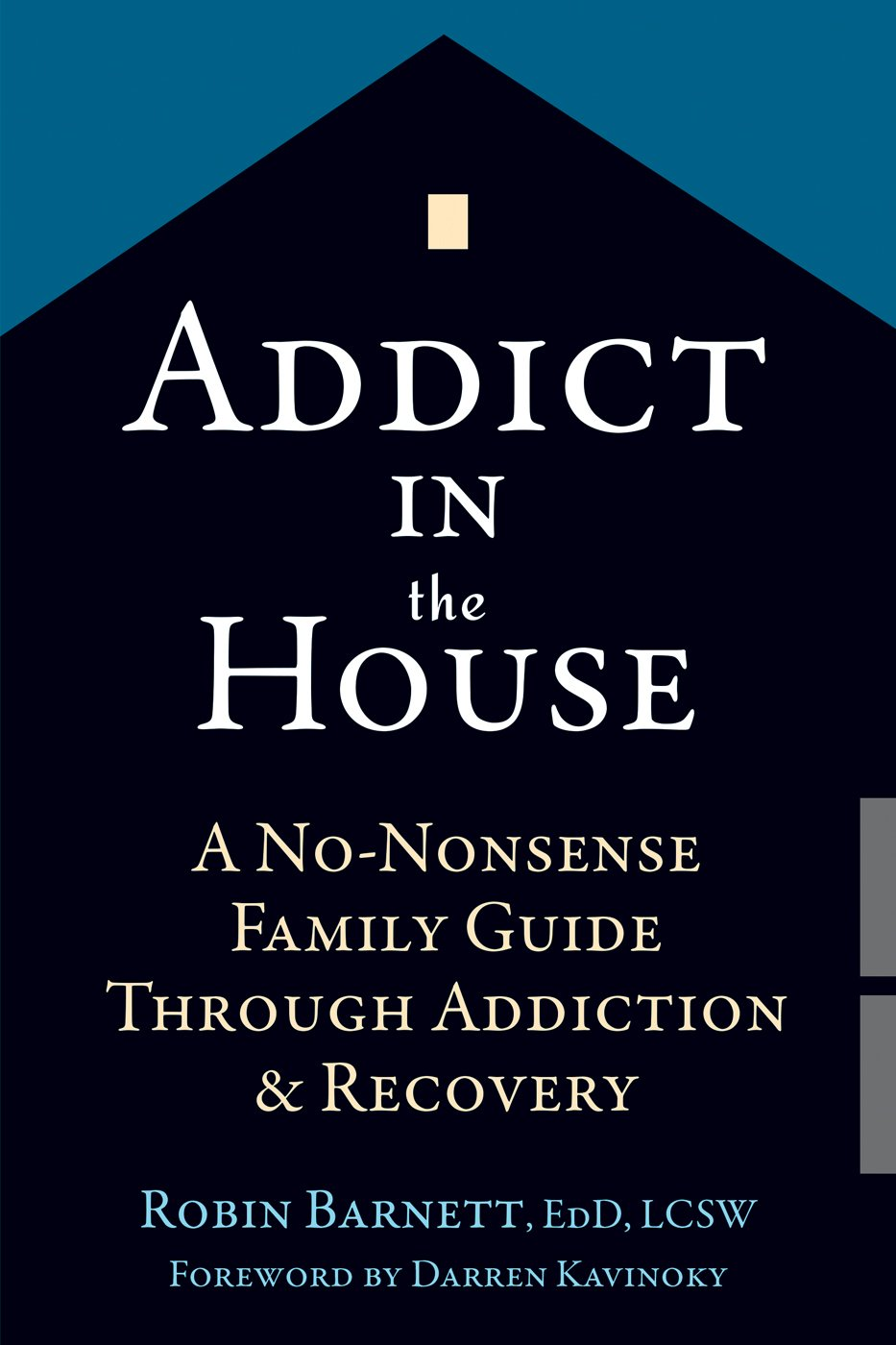 Addict in the House: A No-Nonsense Family Guide Through Addiction and  Recovery: Robin Barnett EdD LCSW, Darren Kavinoky: 9781626252608:  Amazon.com: Books