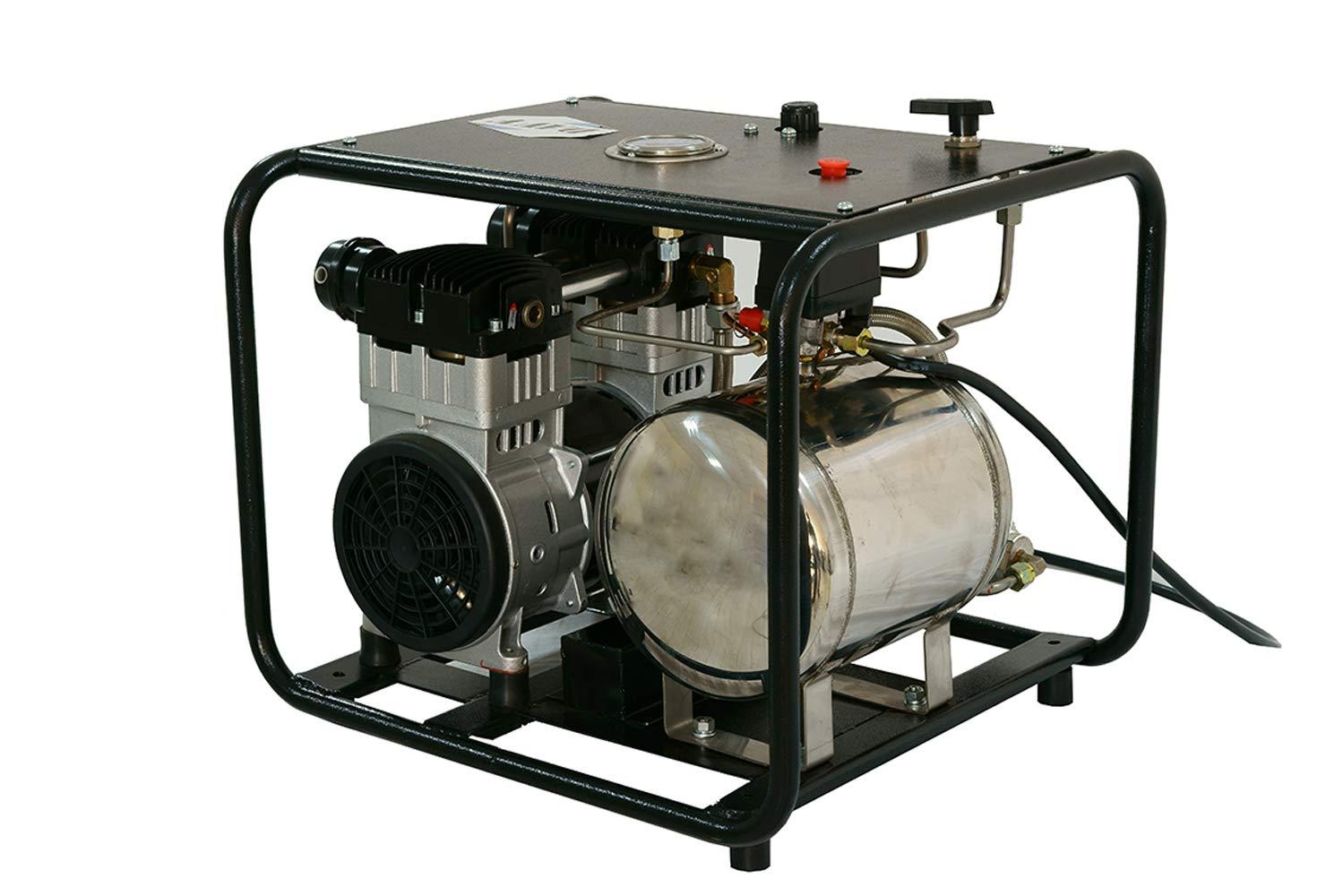 HPDAVV 110 V Sistema de Buceo sin Aceite Hookah con Manguera y respirador, Tanque de Gas, respiración Directa, Dos Salidas de Aire, Servicio de posventa del ...