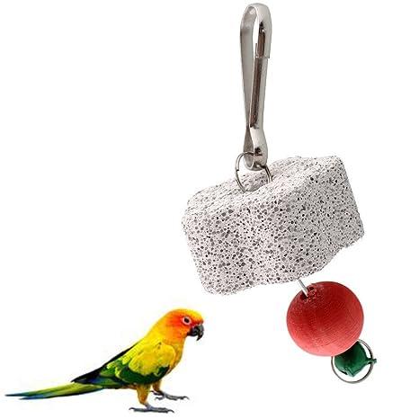 Arnés Parrot Bird Squirel jaula Chew Bite Bell Juguete dientes de ...