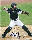 : Autographed Austin Hedges San Diego Padres 8x10 Photo