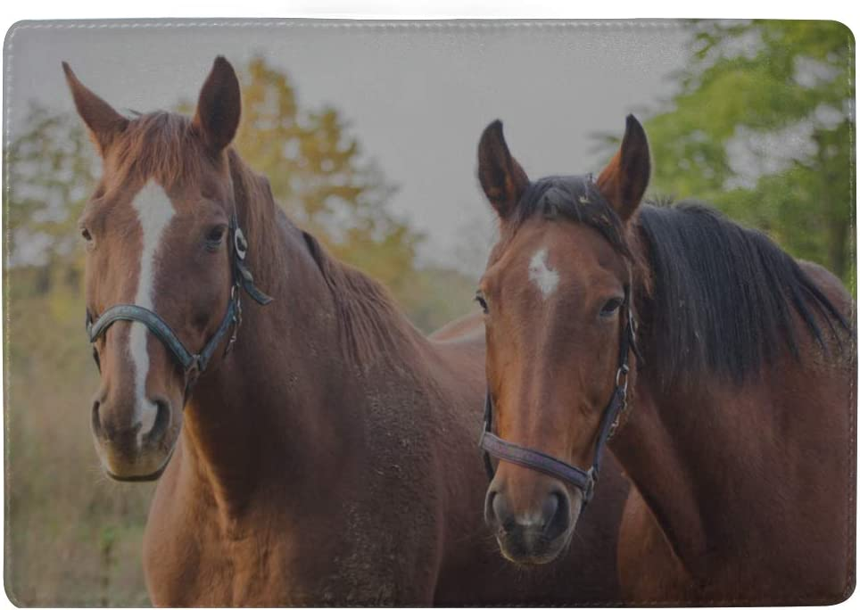 Two Handsome Horses Standing Together Blocking Print Passport Holder Cover Case Travel Luggage Passport Wallet Card Holder Made With Leather For Men Women Kids Family