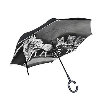 ISAOA Paraguas grande invertido paraguas resistente al viento doble capa reversible plegable para perro retro paraguas