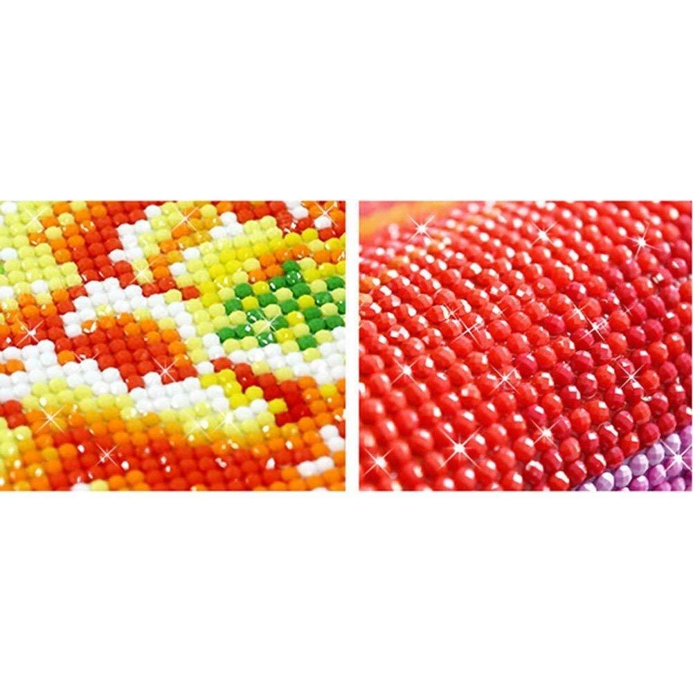 5D DIY Pintura diamante ca/ñ/ón del colorado Rompecabezas de diamantes 40X50CM