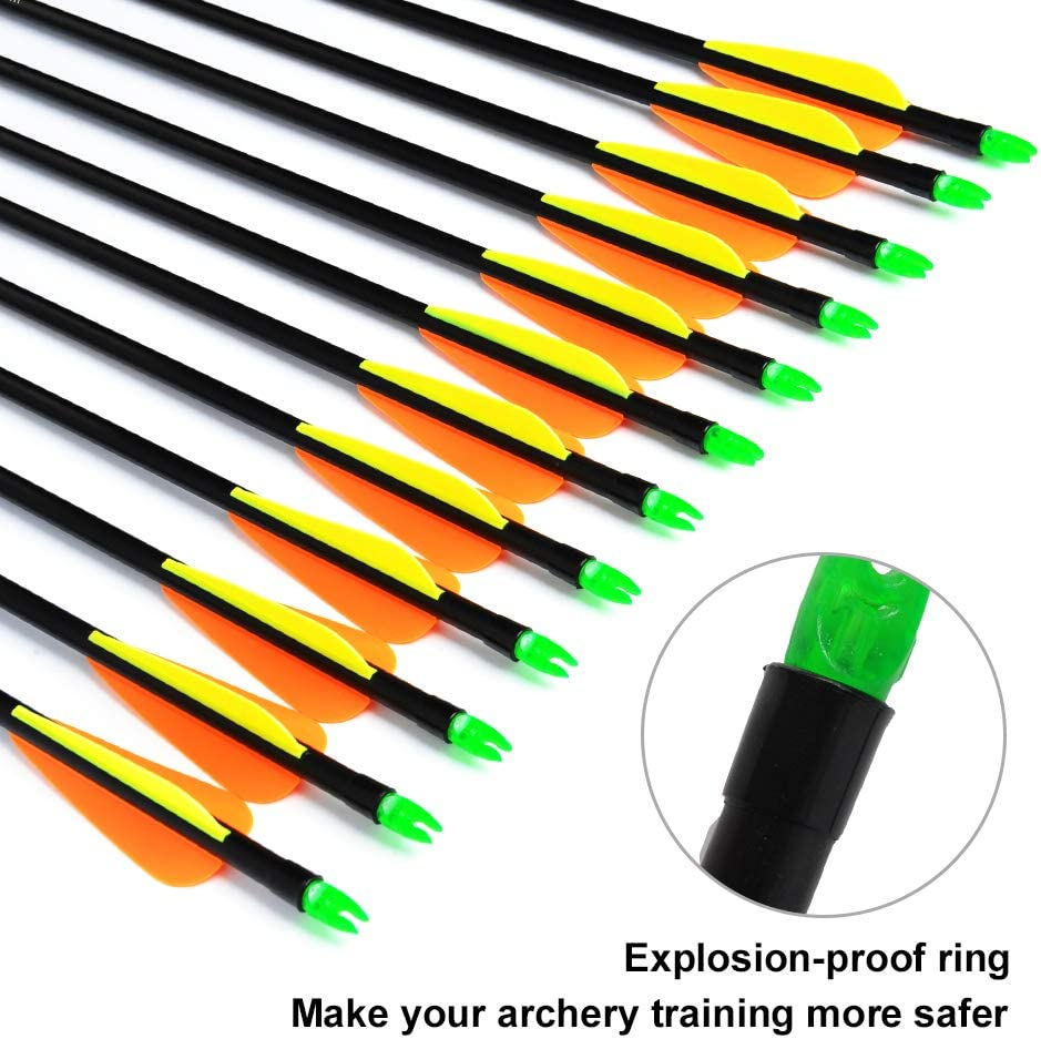 ANTSIR 12Pcs/lot Fiberglass Target Arrow 30 inch Adult Archery Hunting Nock Proof Arrow Steel Point 15-40 Lbs for Recuve & Compound Bow : Sports & Outdoors