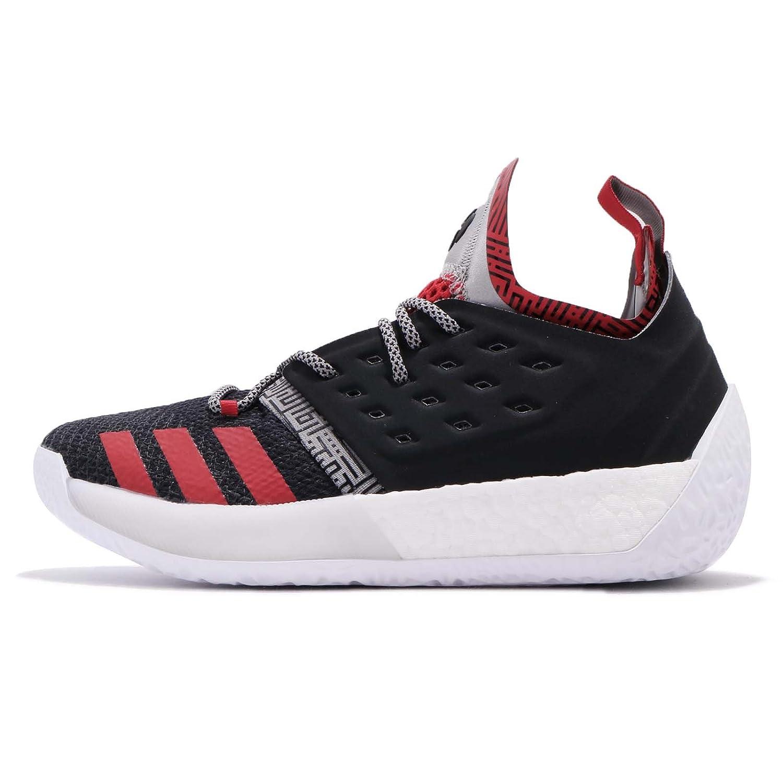 (アディダス) ハーデン Vol. 2 メンズ バスケットボール シューズ adidas Harden Vol. 2 AH2123 [並行輸入品] B07C7PCXKT 30.0 cm BLACK / MULTI SOLID GREY / SCARLET