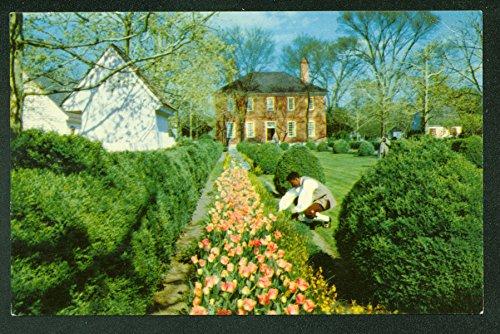 Wythe House Garden View Williamsburg Historic Virginia Home VA Vintage Postcard ()