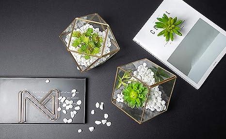tewun - Cubierta de Cristal geométrica de Metal, para decoración ...