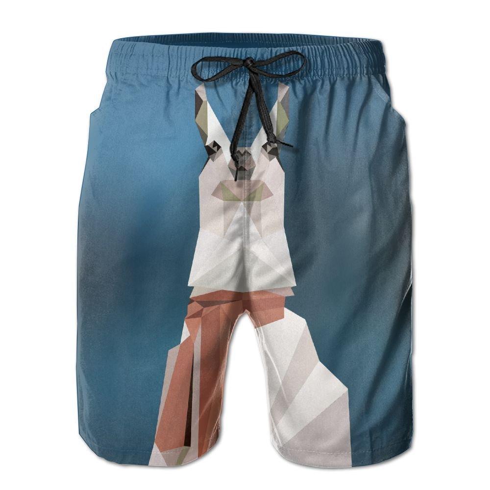 Rniom New Cartoon Fashion Abstract Llama Summer Beach Pants Casual Shorts For Man