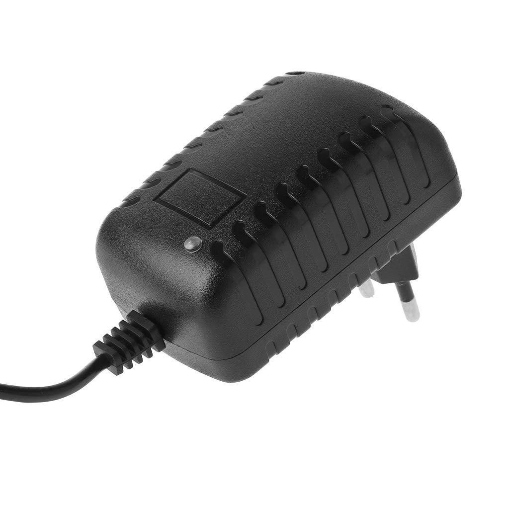 el voltaje de corriente constante EU ZUIMEI EU//Us Plug 12.6v 2a 5.5 mm x 2.1mm 18650 cargador de bater/ía de litio cargador port/átil
