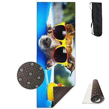 Amazon.com: Gafas de pato para perro, gotas de verano ...