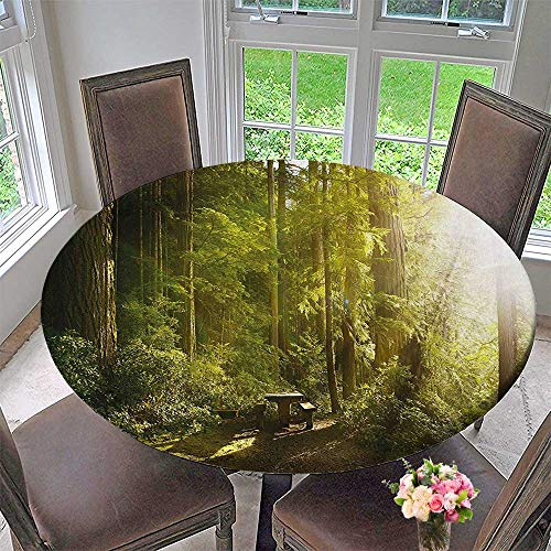 (Mikihome Round Tablecloth Rainforest with Wood Bench in Olympic National Park Washington USA Photo Green Yellow for Kitchen 43.5