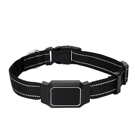WDFS - Collar de rastreador GPS para Mascotas D35 Mini ...