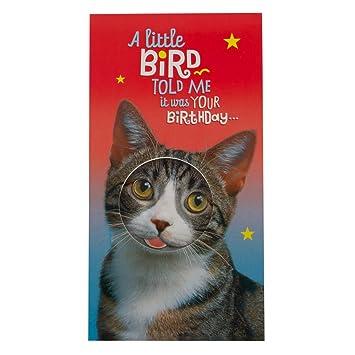 Hallmark Birthday Card Funny Cat