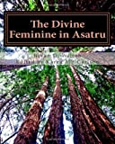 The Divine Feminine in Asatru, Bryan D Wilton, 1492913715