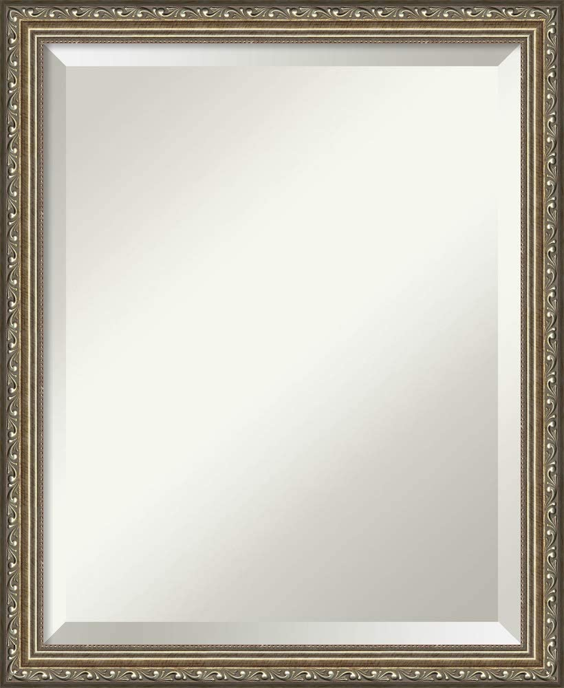 Amanti Art Framed Mirrors for Wall | Parisian Silver Mirror for Wall | Solid Wood Wall Mirrors | Small Wall Mirror 18.25 x 22.25 in.