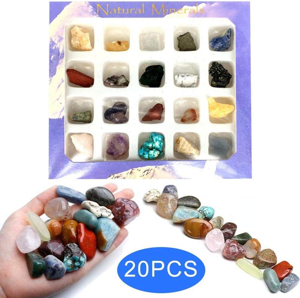 Piedras preciosas de piedra natural Mini minerales irregulares Juego de cajas surtidas 20PCS Colección de piedra natural para la fabricación de joyas de cristal Reiki Decoración del hogar