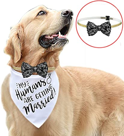 Amazon Com My Humans Are Getting Married Dog Bandana Wedding Dog Bandana Wedding Photo Prop Dog Engagement Announcement Bridesmaid Proposal Bridesmaid Pet Accessories Pet Supplies