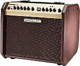 Fishman PRO-LBT-500 Loudbox Mini Acoustic Guitar