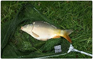 LESGAULEST Doormat Floor Rug/Mat (23.6 x 15.7 inch) - Fish Carp Network Animal Fishing Grass Food